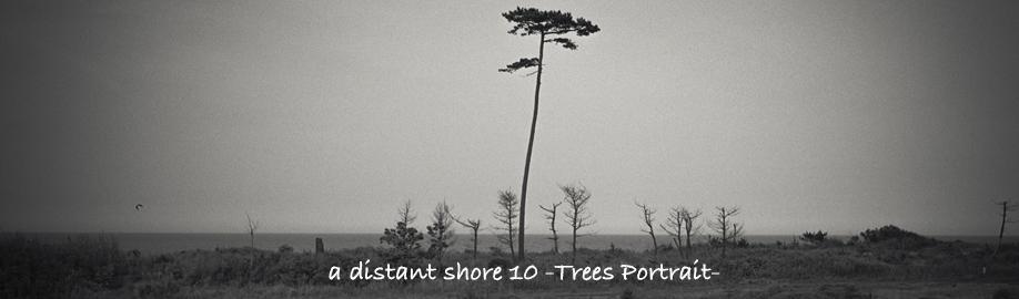 a distant shore 10